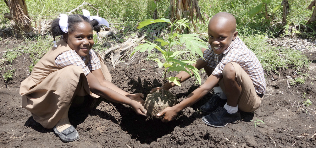 Image result for children planting trees haiti